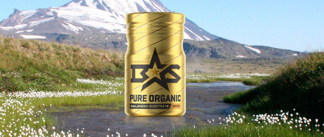 Пояснительная записка для Pure Organic